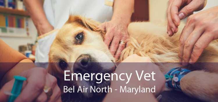 Emergency Vet Bel Air North - Maryland