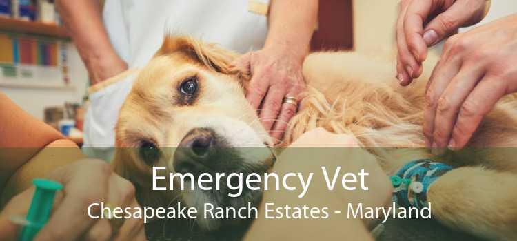 Emergency Vet Chesapeake Ranch Estates - Maryland