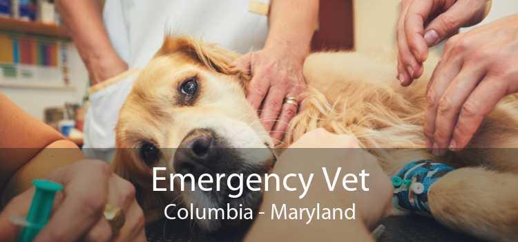 Emergency Vet Columbia - Maryland