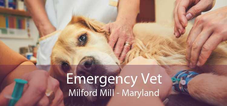 Emergency Vet Milford Mill - Maryland