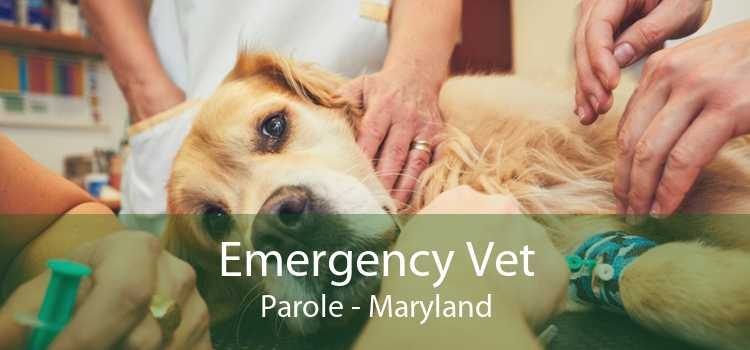 Emergency Vet Parole - Maryland