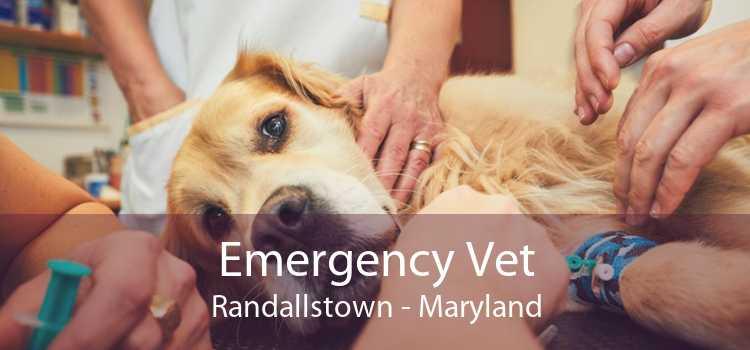 Emergency Vet Randallstown - Maryland