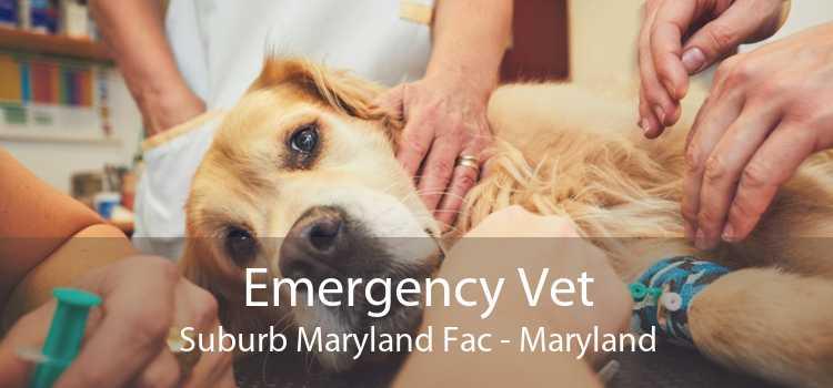 Emergency Vet Suburb Maryland Fac - Maryland