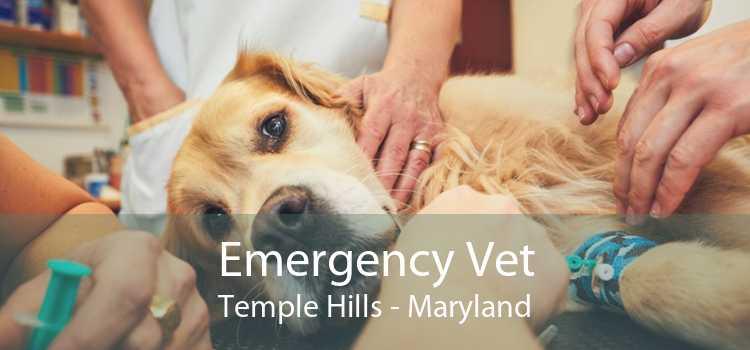 Emergency Vet Temple Hills - Maryland
