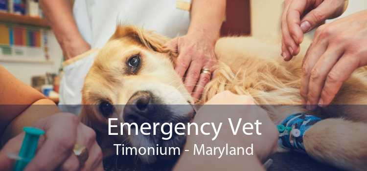 Emergency Vet Timonium - Maryland