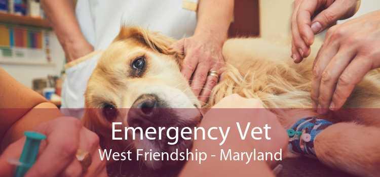 Emergency Vet West Friendship - Maryland