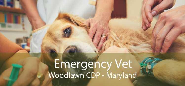 Emergency Vet Woodlawn CDP - Maryland