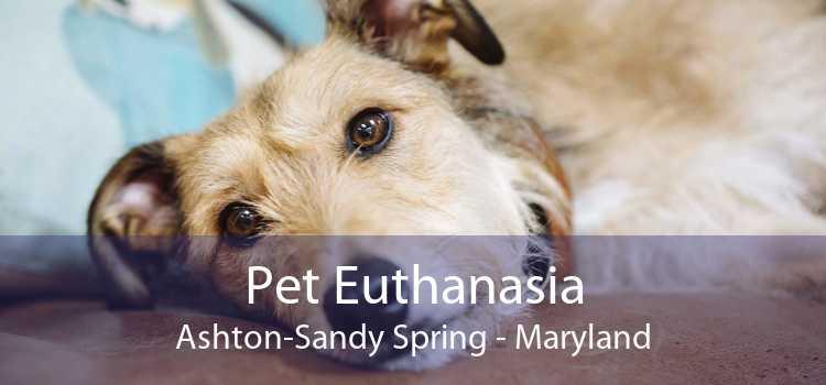 Pet Euthanasia Ashton-Sandy Spring - Maryland