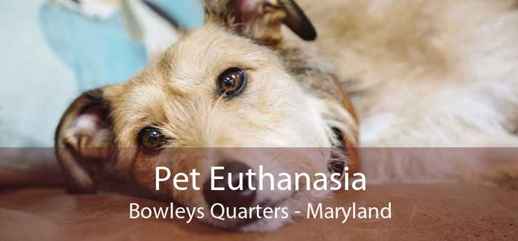 Pet Euthanasia Bowleys Quarters - Maryland