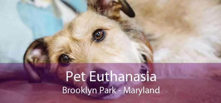 Pet Euthanasia Brooklyn Park - Maryland