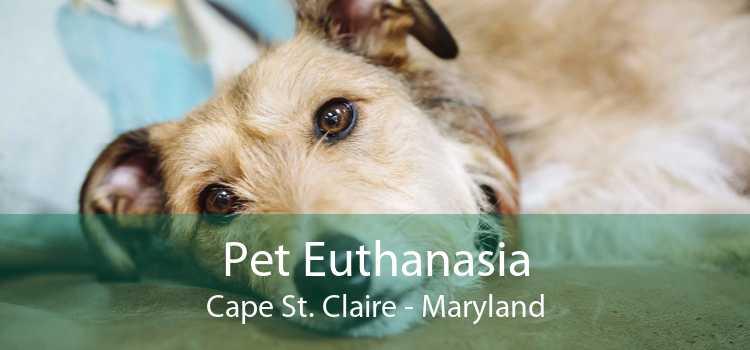 Pet Euthanasia Cape St. Claire - Maryland