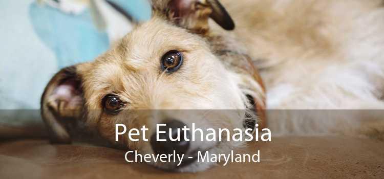 Pet Euthanasia Cheverly - Maryland