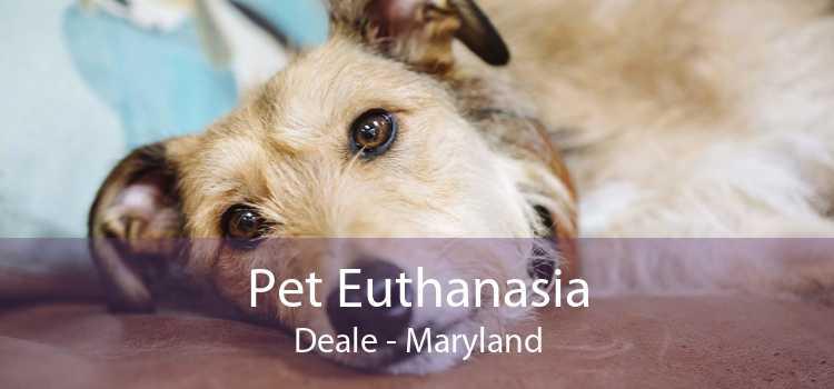 Pet Euthanasia Deale - Maryland