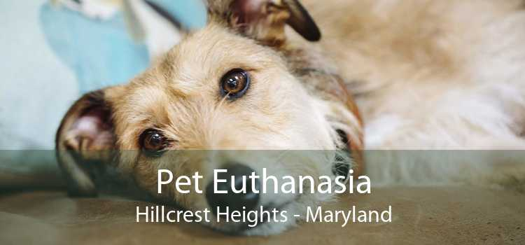 Pet Euthanasia Hillcrest Heights - Maryland