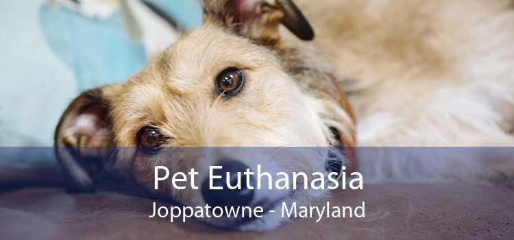 Pet Euthanasia Joppatowne - Maryland