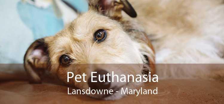 Pet Euthanasia Lansdowne - Maryland