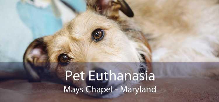 Pet Euthanasia Mays Chapel - Maryland