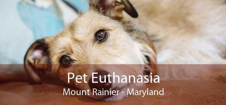 Pet Euthanasia Mount Rainier - Maryland