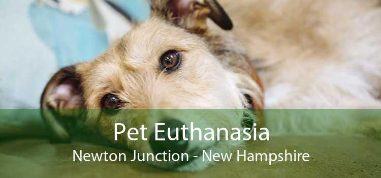 Pet Euthanasia Newton Junction - New Hampshire