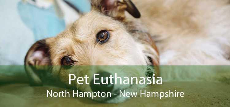 Pet Euthanasia North Hampton - New Hampshire
