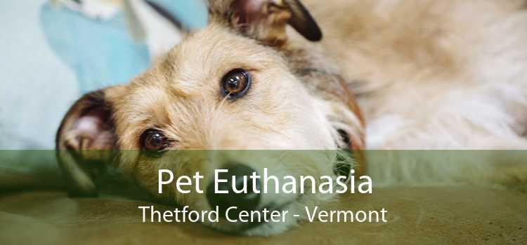Pet Euthanasia Thetford Center - Vermont