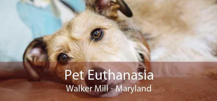 Pet Euthanasia Walker Mill - Maryland