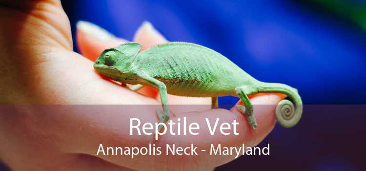 Reptile Vet Annapolis Neck - Maryland