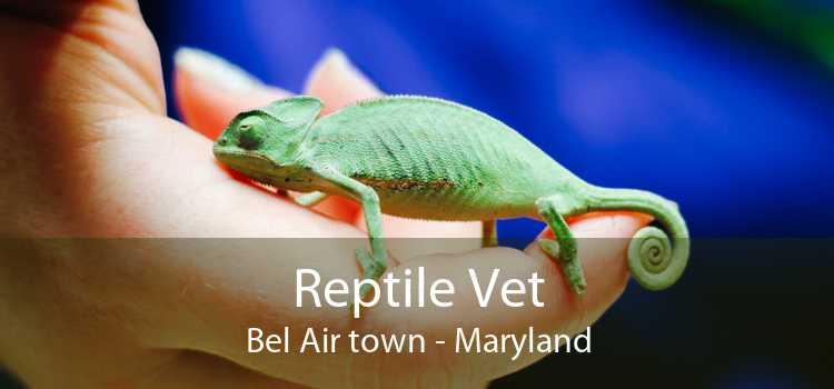Reptile Vet Bel Air town - Maryland