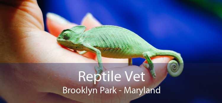 Reptile Vet Brooklyn Park - Maryland