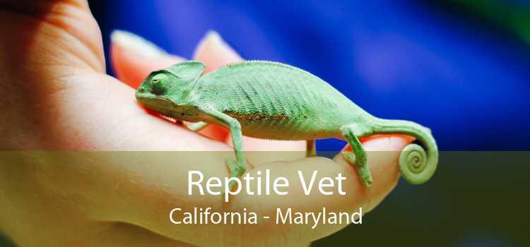 Reptile Vet California - Maryland
