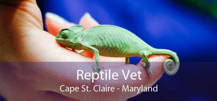 Reptile Vet Cape St. Claire - Maryland