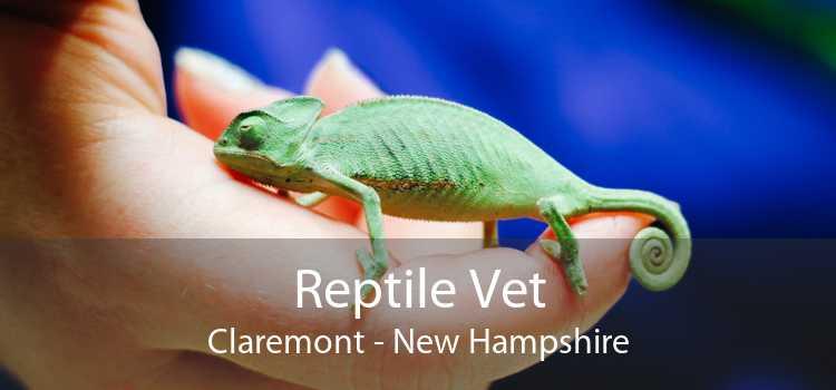 Reptile Vet Claremont - New Hampshire
