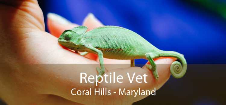 Reptile Vet Coral Hills - Maryland