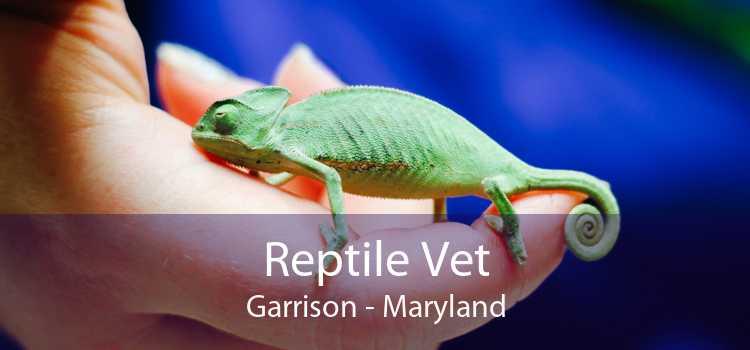 Reptile Vet Garrison - Maryland