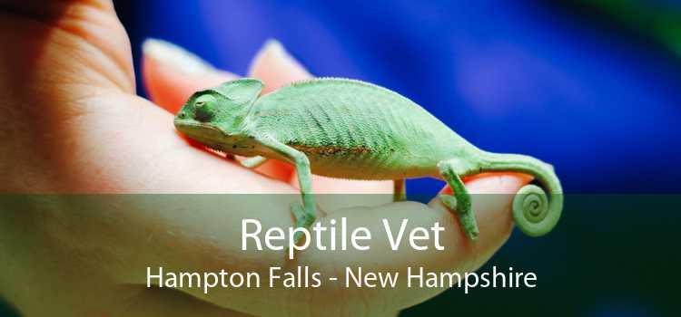 Reptile Vet Hampton Falls - New Hampshire