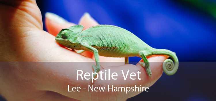 Reptile Vet Lee - New Hampshire