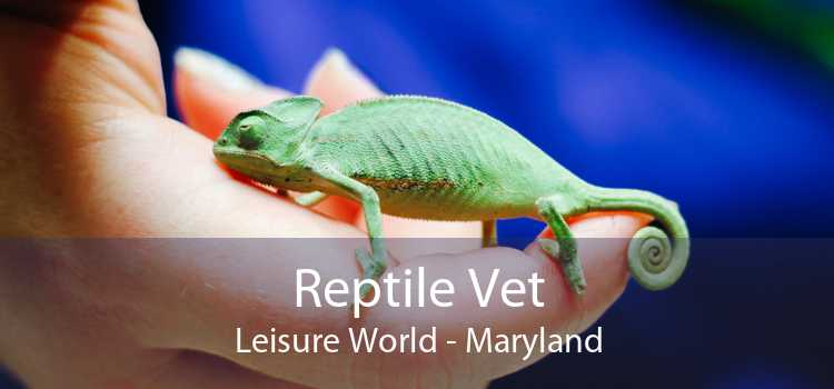 Reptile Vet Leisure World - Maryland