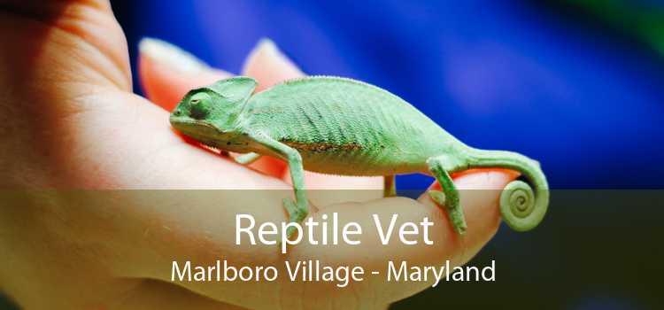 Reptile Vet Marlboro Village - Maryland
