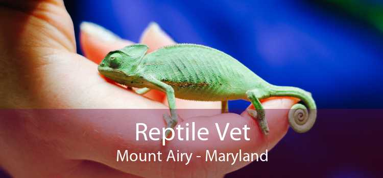 Reptile Vet Mount Airy - Maryland