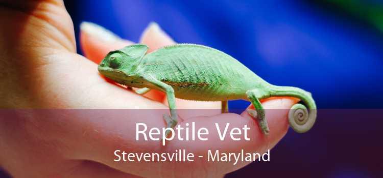 Reptile Vet Stevensville - Maryland