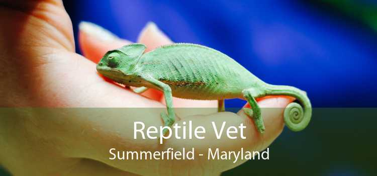 Reptile Vet Summerfield - Maryland
