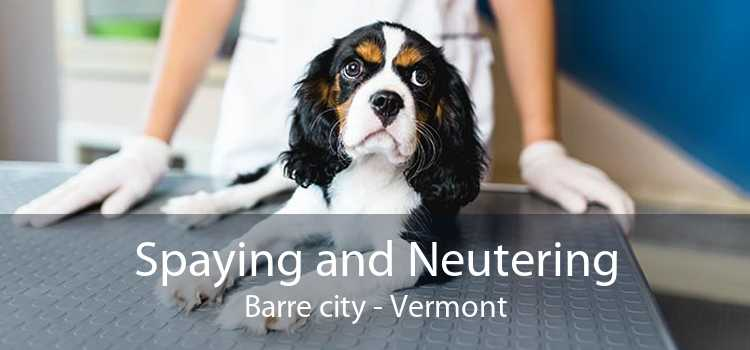 Spaying and Neutering Barre city - Vermont