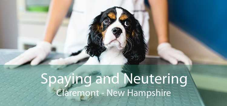 Spaying and Neutering Claremont - New Hampshire