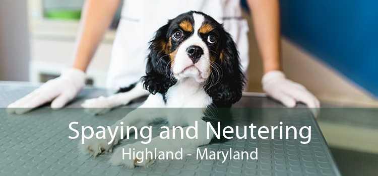 Spaying and Neutering Highland - Maryland