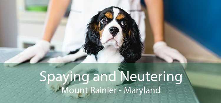 Spaying and Neutering Mount Rainier - Maryland
