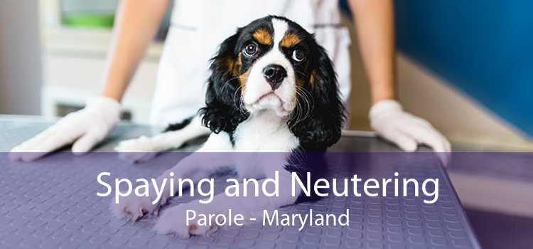 Spaying and Neutering Parole - Maryland