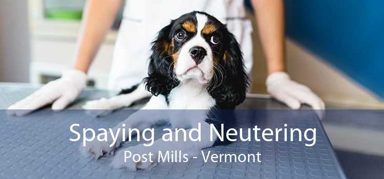 Spaying and Neutering Post Mills - Vermont