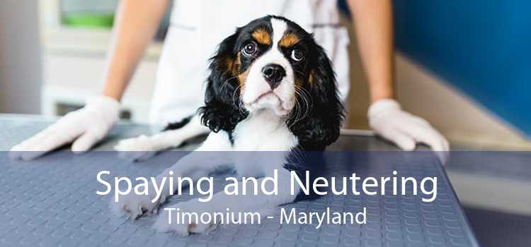 Spaying and Neutering Timonium - Maryland