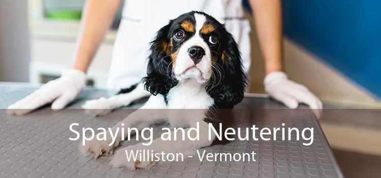 Spaying and Neutering Williston - Vermont