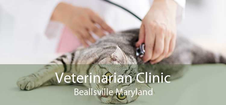 Veterinarian Clinic Beallsville Maryland
